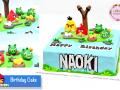 birthday-cake-_ANGRYBIRD