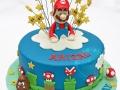 birthday-cake-_-MarioBros